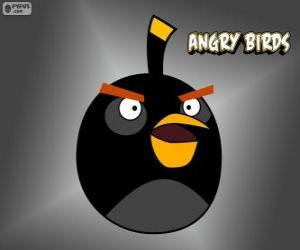 Puzle Černý pták (Black Bird)