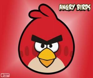 Puzle Červená Pták (Red Bird)