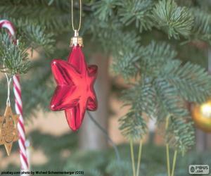 Puzle Červená vánoční hvězda