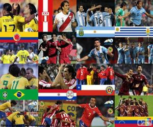 Puzle Čtvrtfinále, Argentina 2011