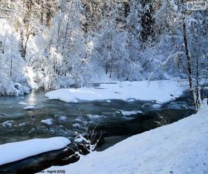 Puzle Řeka v zimě
