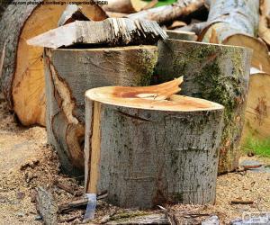Puzle Řez stromů