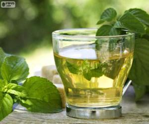 Puzle Šálek zeleného čaje