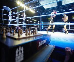 Puzle Šachový box je hybridní sport, který kombinuje boxu s šachy ve střídavém kolech.