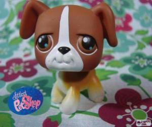 Puzle Štěně od Littlest PetShop