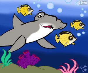 Puzle Žralok kladivoun, Julieta Vitalij