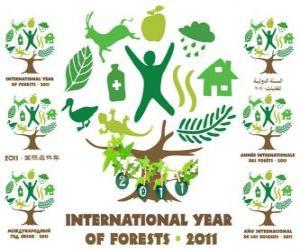 Puzle 2011 Mezinárodní rok lesů