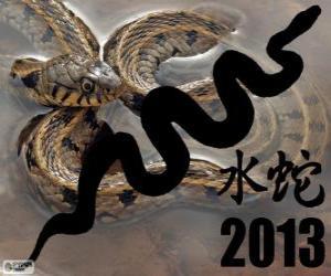 Puzle 2013, rok Vodní Had. Podle čínského kalendáře od 10 února 2013 na 30 ledna 2014