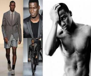 Puzle Agbodji David francouzský model