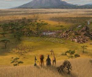 Puzle Alex, Marty, Melman, Glorie pozorovat obrovské pláně Afriky