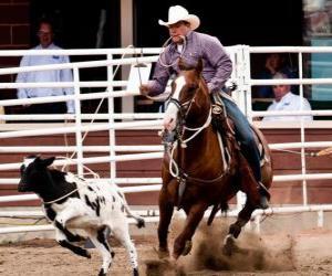 Puzle Americké Rodeo