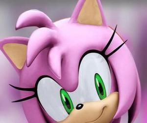 Puzle Amy Rose je růžová ježek se zelenýma očima, je šíleně zamilovaná do Sonic