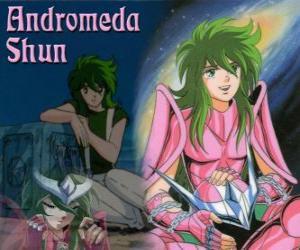 Puzle Andromeda Shun, světec bronzu ze souhvězdí Andromeda je