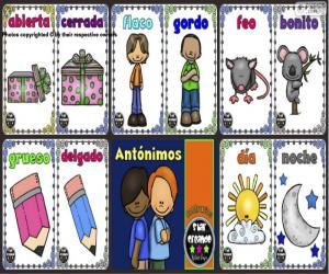 Puzle Antonyma