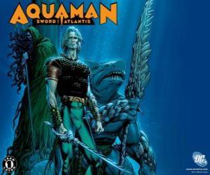 Puzle Aquaman byl jedním ze zakládajících členů týmu Justice League amerických nebo JLA
