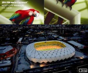 Puzle Arena Amazônia (50 000), Manaus