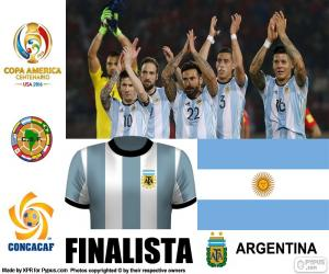 Puzle ARG finalistou, Copa America 2016