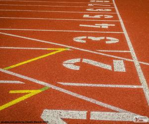 Puzle Atletika na trati 100 m