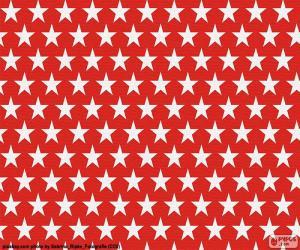 Puzle Bílá hvězdičky