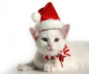 Puzle bílá kočka s Santa Claus klobouky