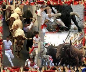 Puzle Běh býků nebo encierro, Sanfermines. Pamplona, Navarra, Španělsko. San Fermin festival od 6. do 14. července