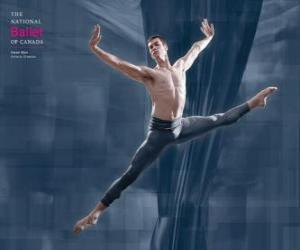 Puzle Balet - Tanečnice v akci