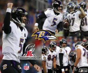 Puzle Baltimore Ravens 2012 AFC champion