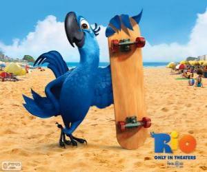 Puzle Blu je zábava papoušek a hlavní protagonista filmu Rio