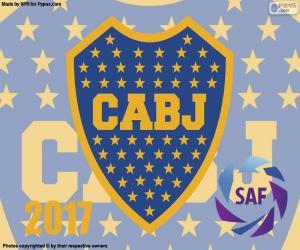 Puzle Boca Juniors, mistr 2016-2017