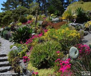 Puzle Botanická zahrada