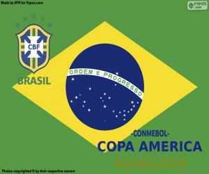 Puzle Brazílie, mistrem Copa America 2019