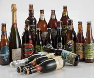 Puzle Brazilský 22 piv