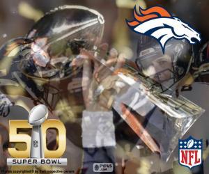 Puzle Broncos, Super Bowl mistrů 2016