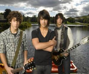 Puzle Brothers Grey, Camp Rock