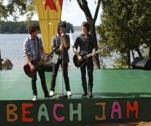 Puzle Brothers Shane (Joe Jonas), Nate (Nick Jonas) a Jason Gray (Kevin Jonas), zpěv na Camp Rock Beach Jam