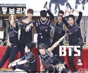 Puzle BTS, Bangtan Boys