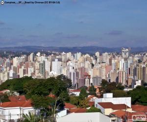 Puzle Campinas, Brazílie