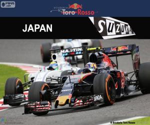 Puzle Carlos Sainz Jr., Grand Prix Japonska 2016