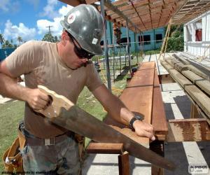 Puzle Carpenter