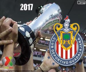 Puzle C.D. Guadalajara, mistr Clausura 2017