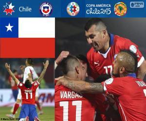 Puzle CHI finalistou, Copa America 2015