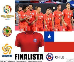 Puzle CHI finalistou, Copa America 2016