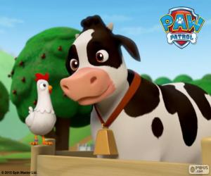 Puzle Chickaletta a Bettina, PAW Patrol
