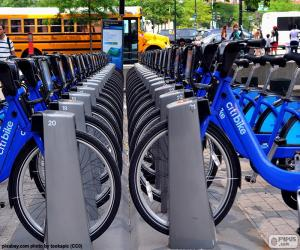 Puzle Citi Bike, New York