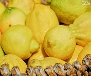 Puzle Citrony