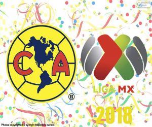 Puzle Club Amerika, mistr Apertura 2018