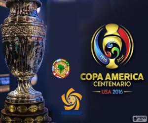 Puzle Copa América Centenario trophy 2016