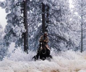 Puzle Cowboy nebo na koni kovboj