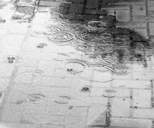 Puzle Déšť