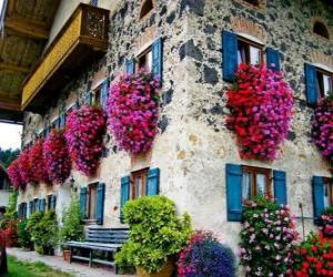 Puzle Dům na jaře s květinami v oknech